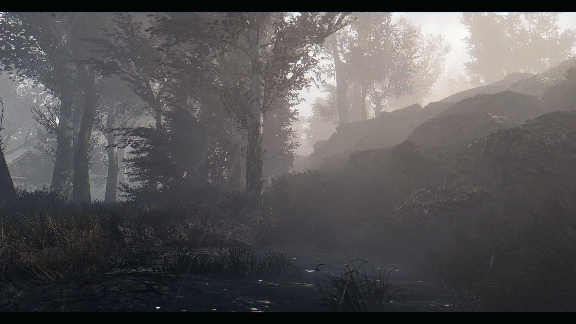 Foggy Wasteland