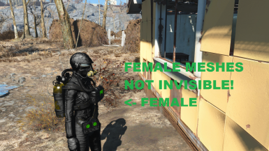 IMMERSIVE SCUBA MOD FEMALE MESHES NO LONGER INVISIBLE