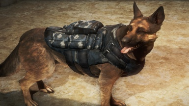 K-9 Vest Harness in Sky Camo