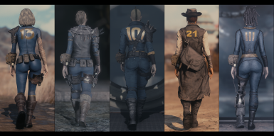 Vault Dweller - Chosen One - Lone Wanderer - Courier 6 - Sole Survivor
