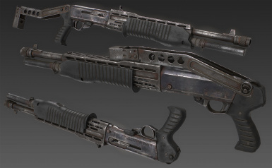 SPAS-12 - finished