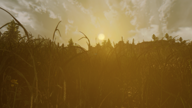 Sunrise at Vault 92