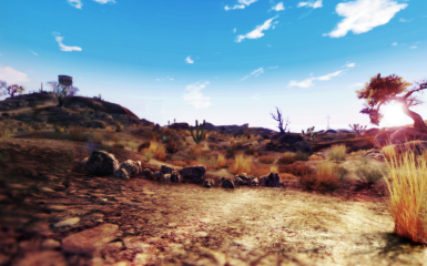 Life in the desert - Remasterized