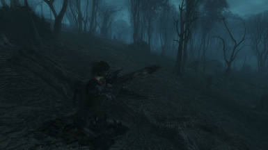 stalking in the swamps