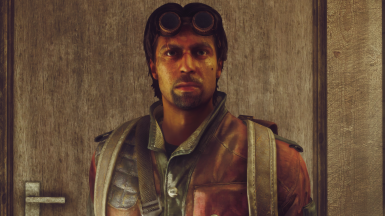 FNV - NEW YEAR NEW COURIER