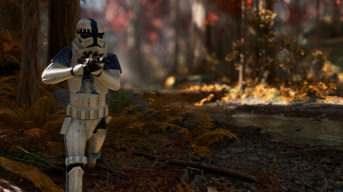 Endor Assault