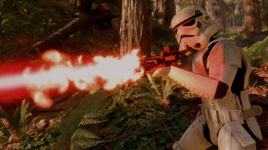 Stormtrooper on Endor
