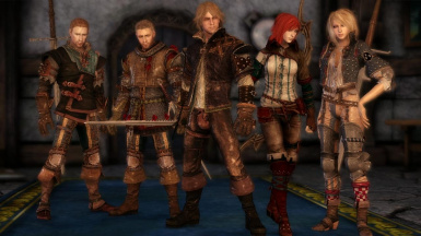 The Witcher 2 DAO