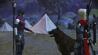 Talk to the dog Morrigan