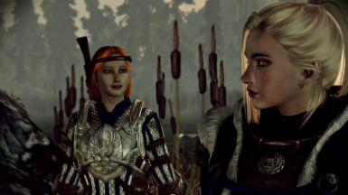 Aveline and the Warden
