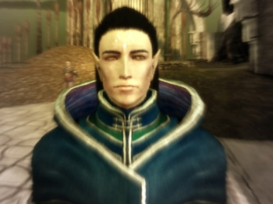 Newest Male Elf - Chantry Monk To Be