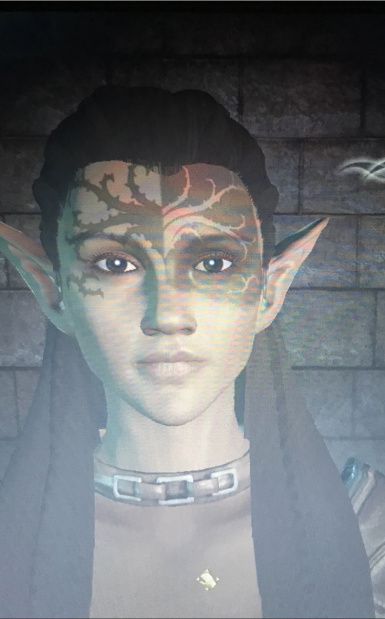 My Dalish Elf