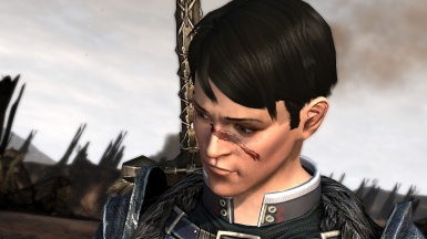Carver Hawke as the future Champion