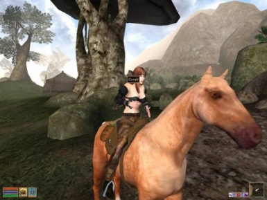 ideas for modders horses ranchs