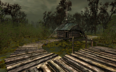 Shack in the swamp