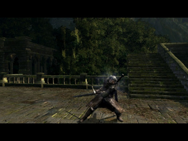 The witcher in lordran