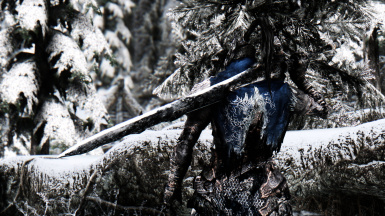 Artorias in Skyrim