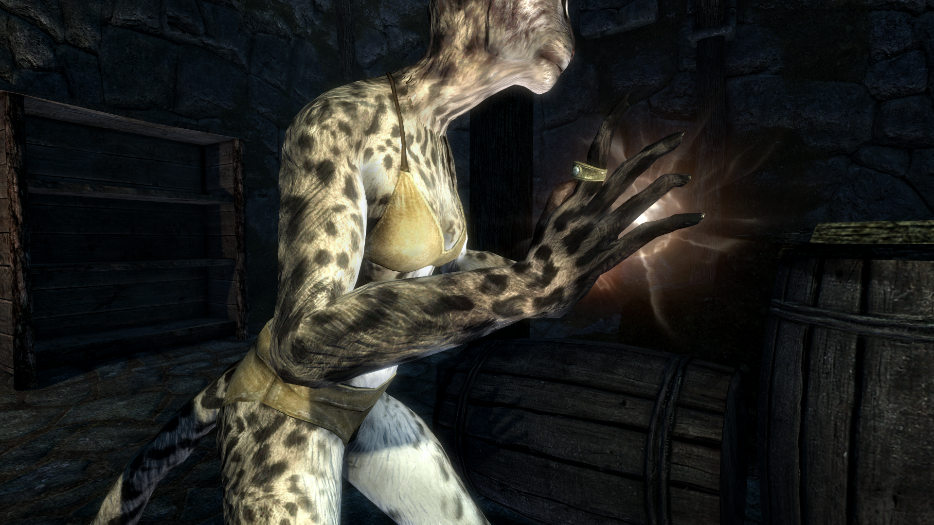 Feminine Khajiit Textures Grey Cat And Leopard Page 8 File