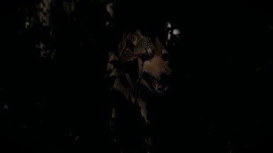 Wolf deep in the Shadows
