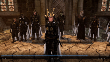 Dragonguard Blades led by Captain Lydia