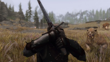 Fight in the plains
