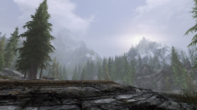 DynDOLOD Seems to be Working Well