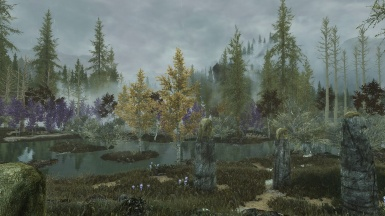 A overview of the swamp -  Sin xtreme realism ENb and Northern saga weathers and seasons