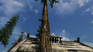 Alternative Pine Bark - ET3D - every tree 3D different