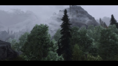 Riften forest refreshed