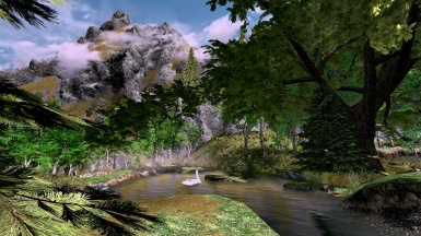 A pond in the Rift area