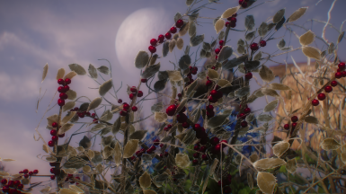 Sufficiently Optimized Snowberries 3D