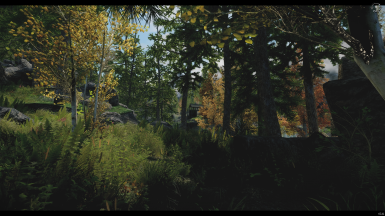 Performance ENB with NAT Natural Atmospheric Tamriel