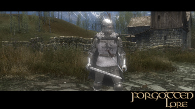 Stormberk Plate Armour in Game