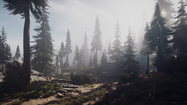 Using my custom Reshade - PATHOS