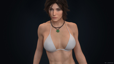 Lara Croft 08