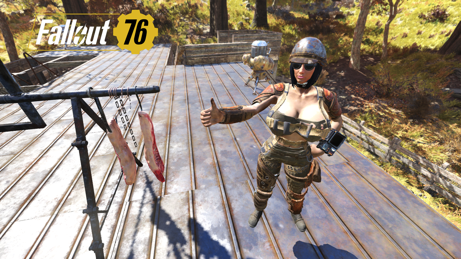 My Fallout 76 Character 4 at Fallout 76 Nexus - Mods and