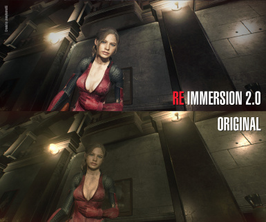 RE IMMERSION RESHADE 2