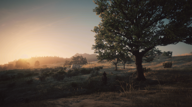 Sunrise from RDR2