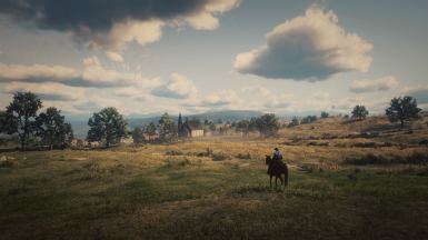 Beauty of RDR2