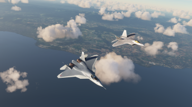 Brothers From Different Mothers F-22 and T-50