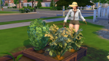 Sims 4 - Life and Times of a Humble Farmer