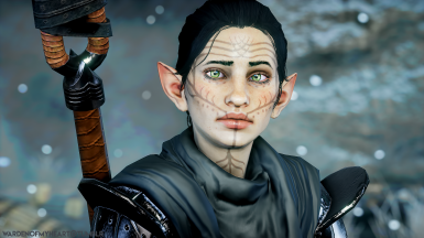 A Younger Avarin Lavellan