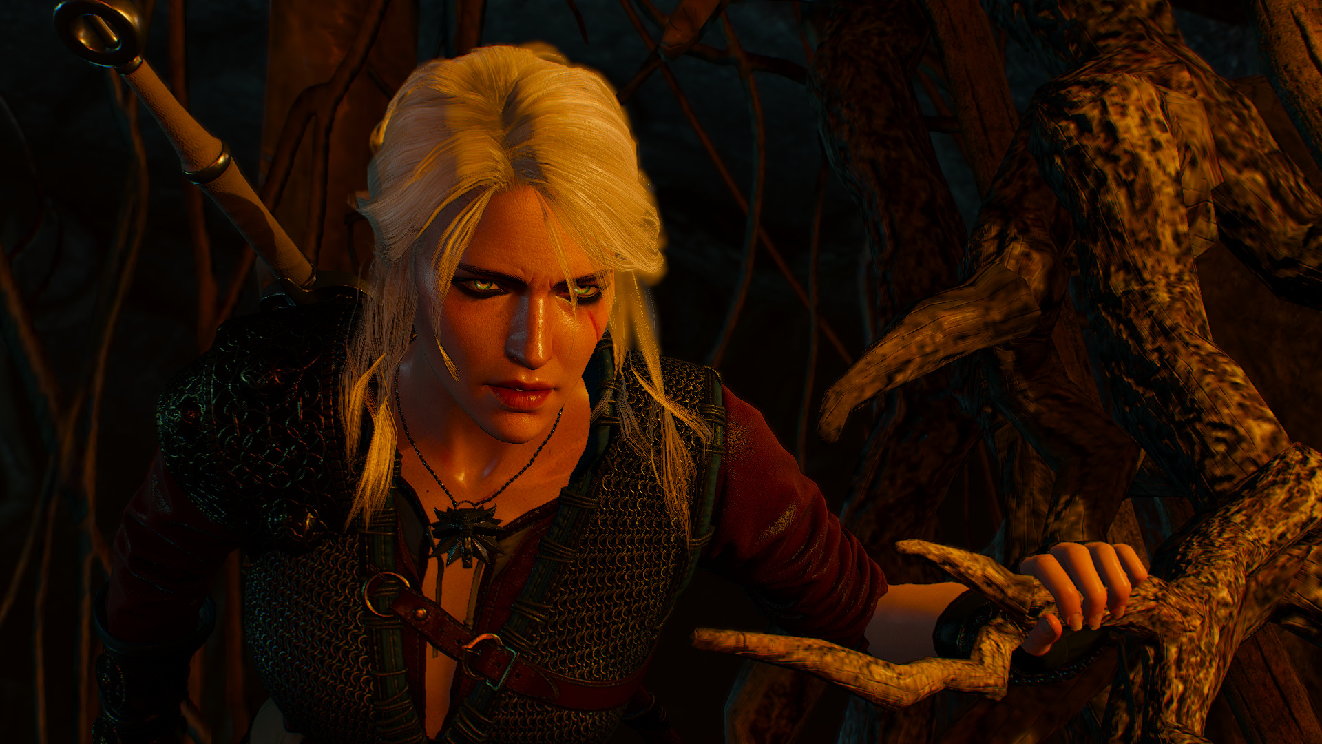 Cirilla the Witcher at The Witcher 3 Nexus - Mods and