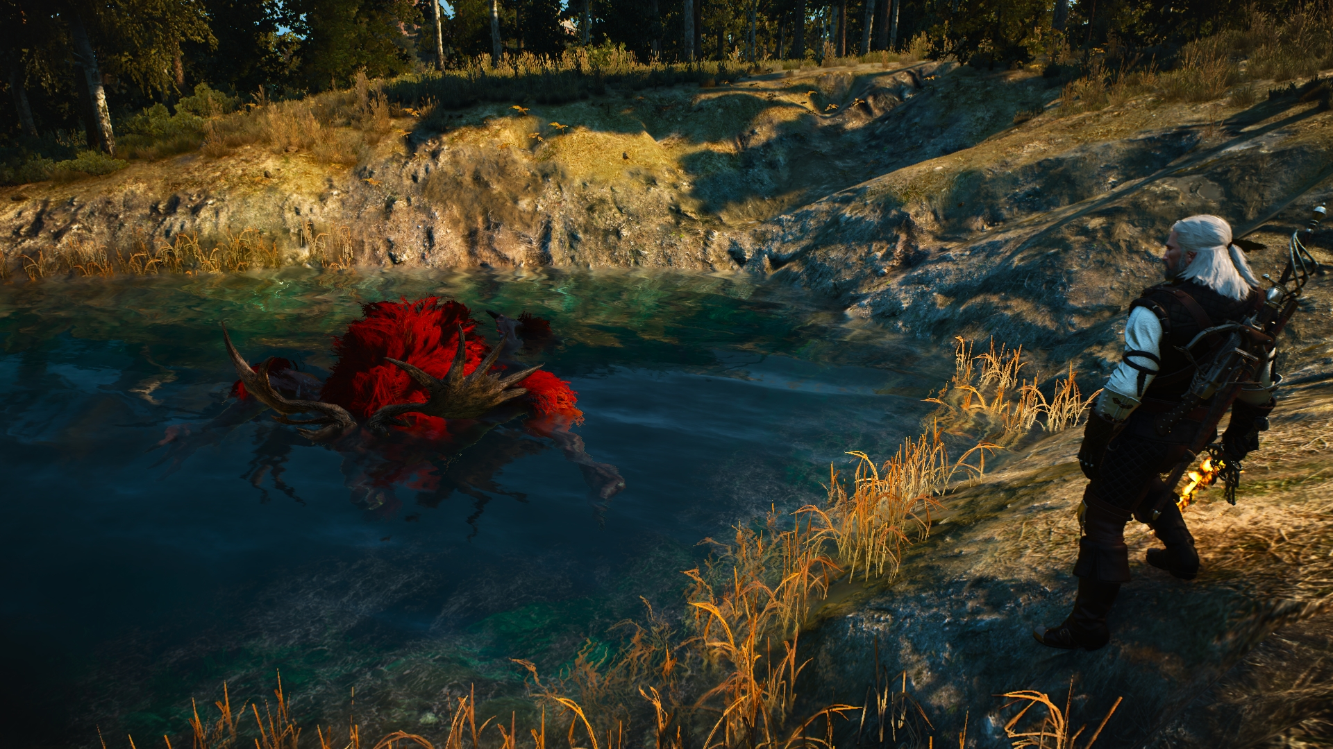 Poor fiend at The Witcher 3 Nexus - Mods and community