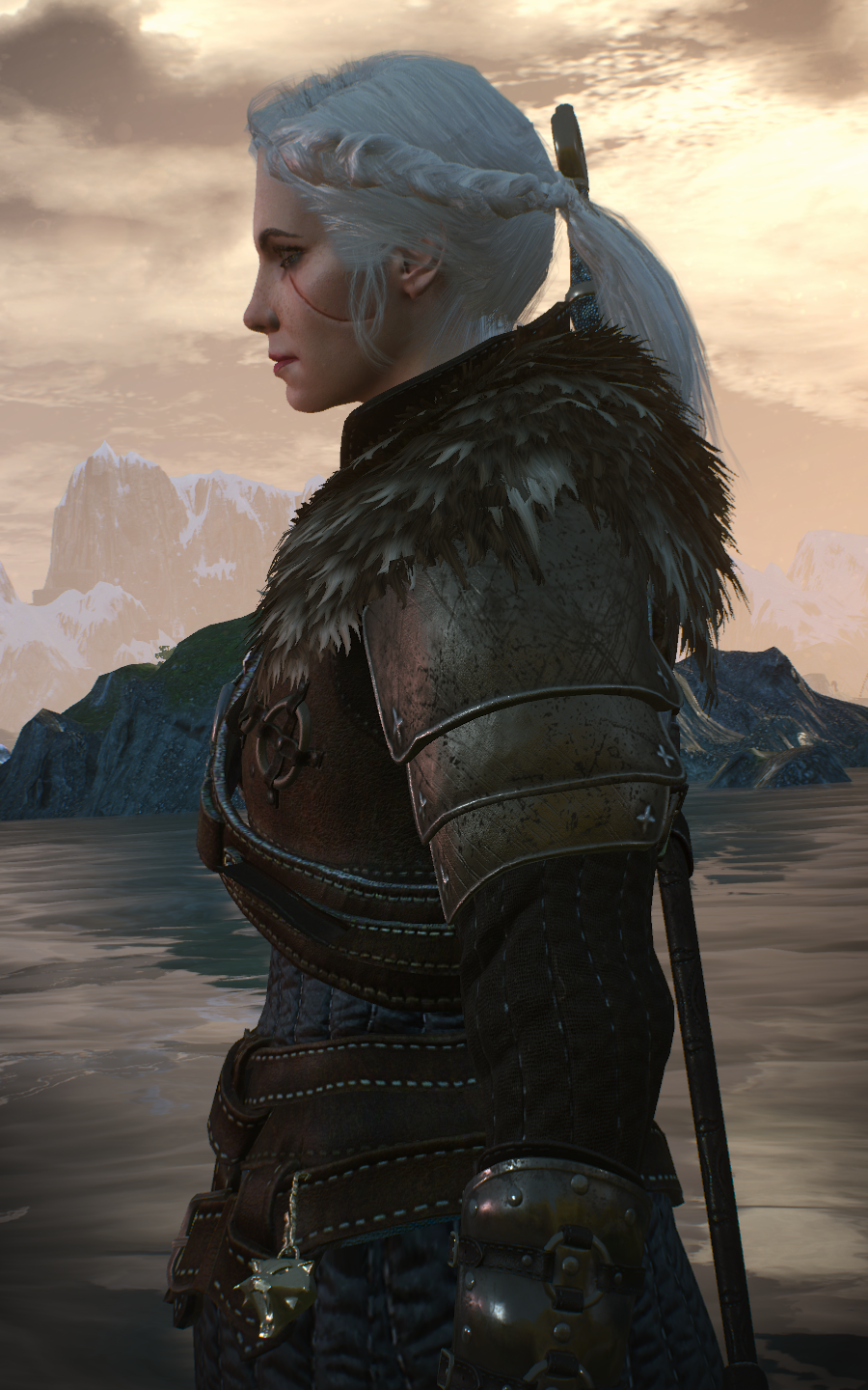 - at The Witcher 3 Nexus - Mods and community