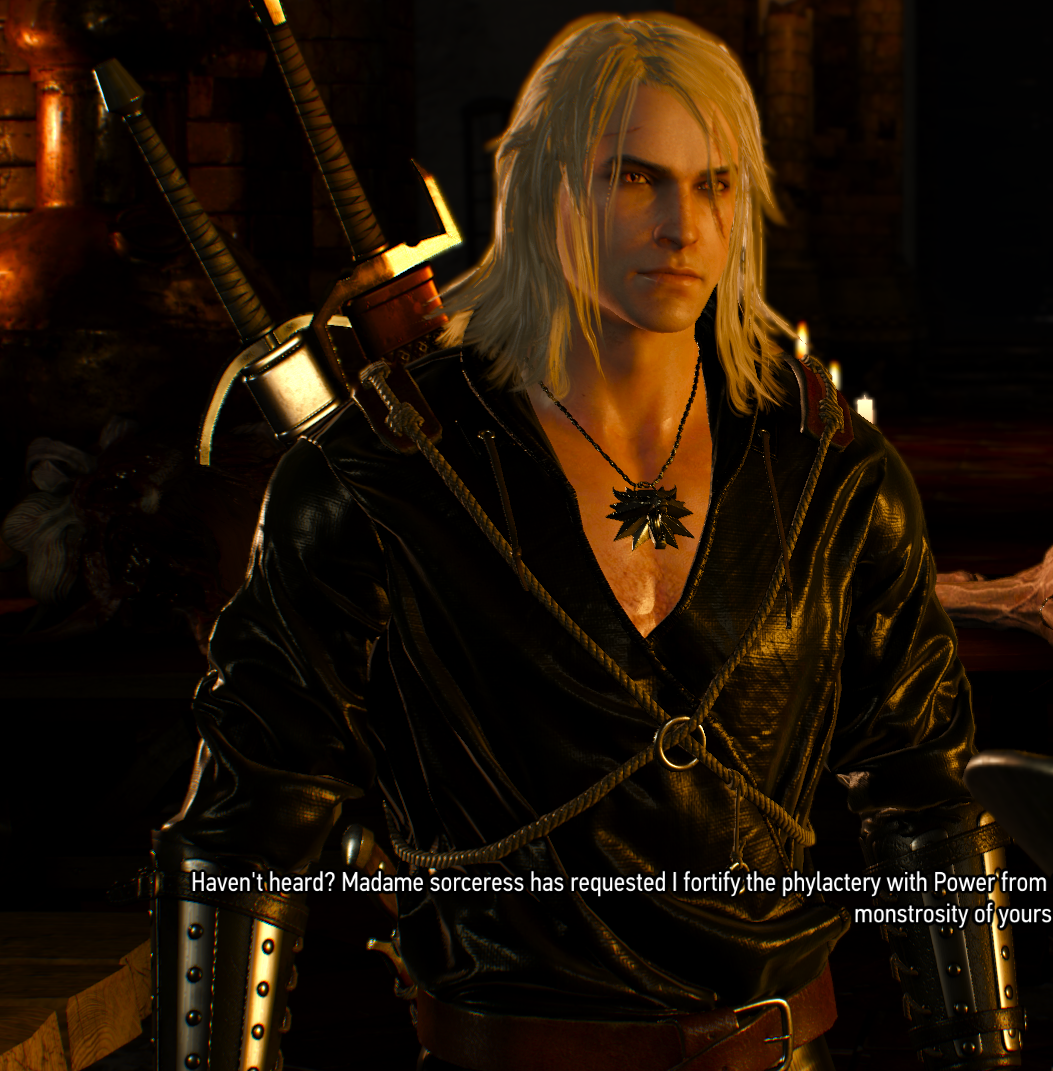 Witcher 3 Combined Hairstyles At The Witcher 3 Nexus Mods