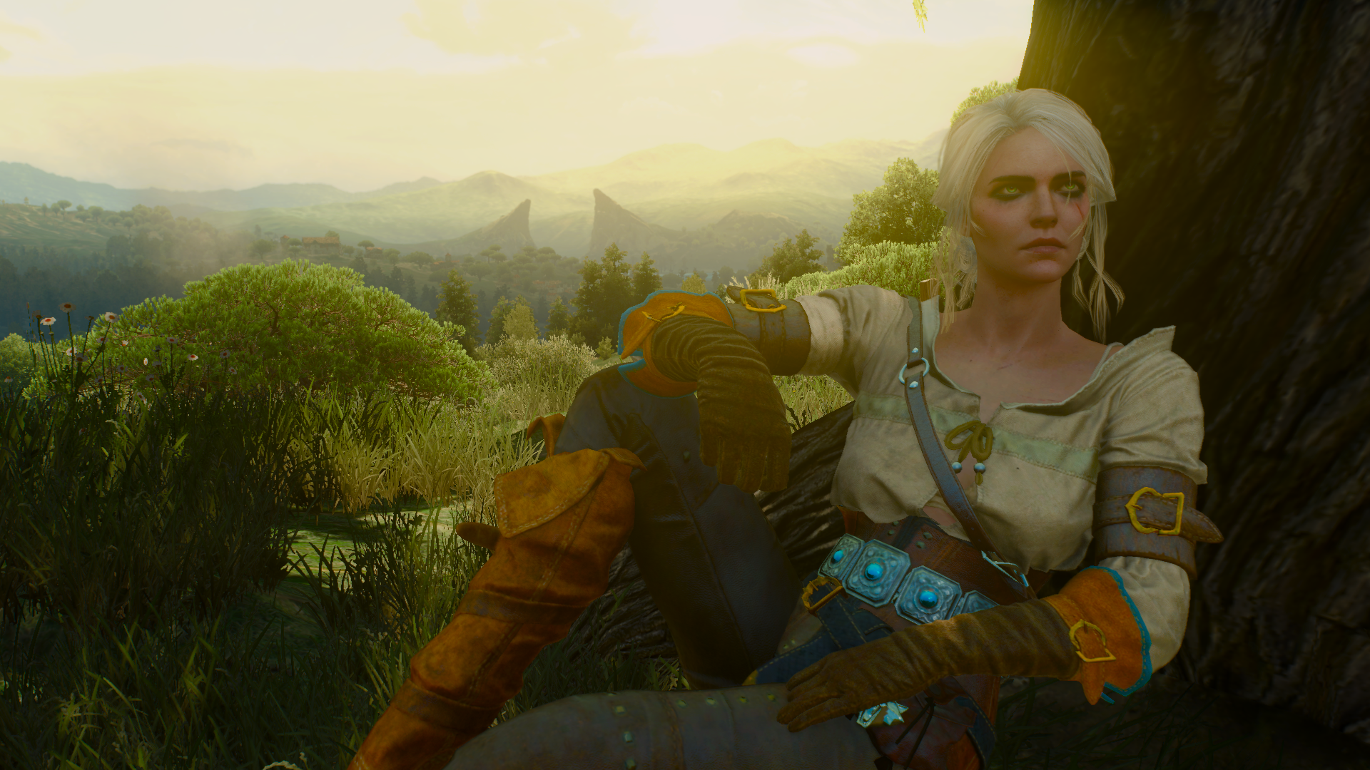 Ciri Wallpaper At The Witcher 3 Nexus Mods And Community