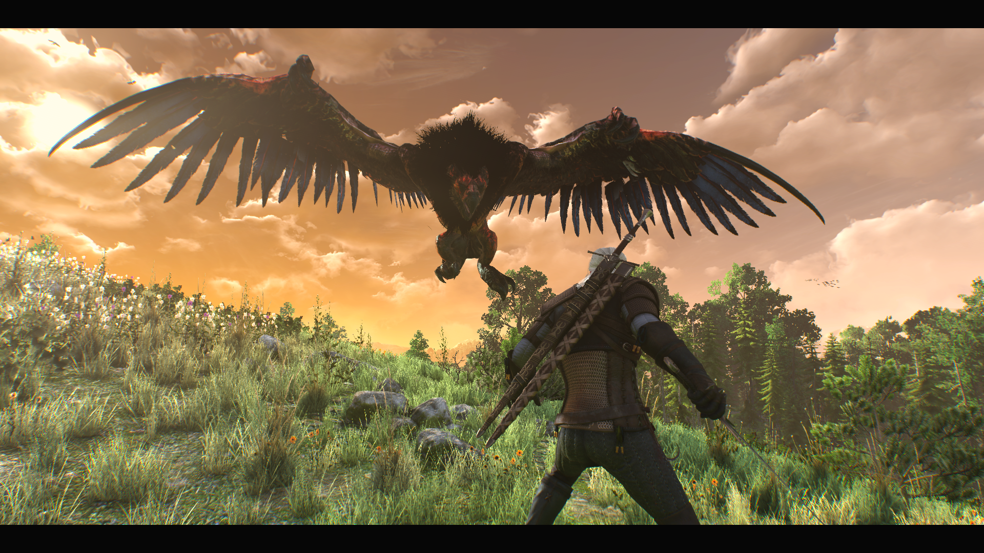 Another Geralt Vs Royal Griffin At The Witcher 3 Nexus Mods And Community