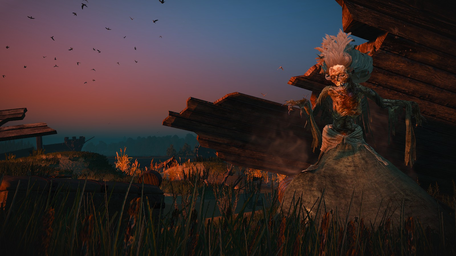 Fantome pirate at the witcher 3 nexus mods and community - Pirate fantome ...