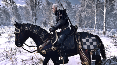 Winter in White Orchard
